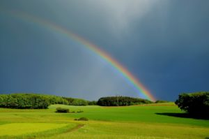 There's no rainbow without the rain